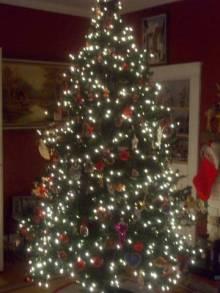 Arbol de navidad esperando los regalos