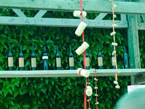 Bodegas y productores de vino del Cantón de Ginebra abren sus puertas. Fotos cortesía de Jeremy King.